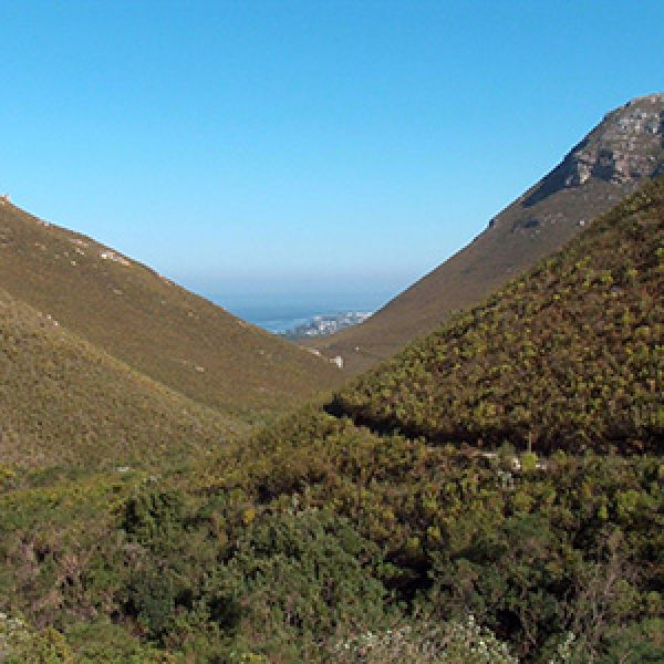 Fernkloof Nature Reserve